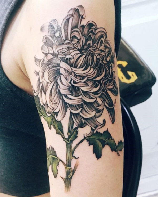 Chrysanthemum green stem sleeve tattoo