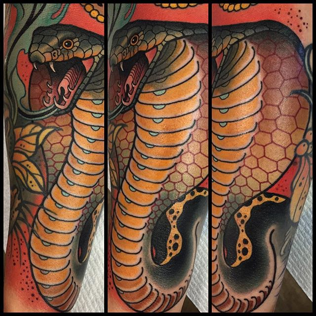 King Cobra Colorful Arm Tattoo