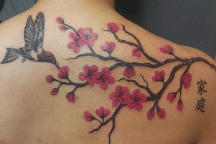 cherry blossom with bird