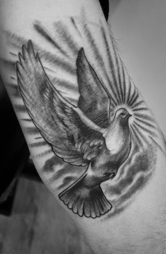 Realistic Dove Tattoo 2